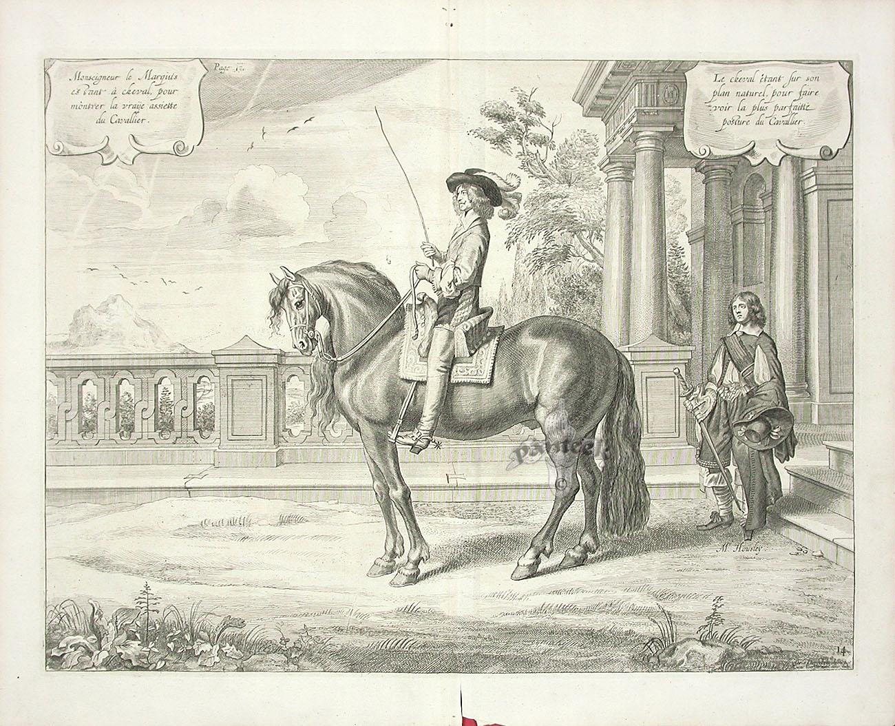 a general system of horsemanship