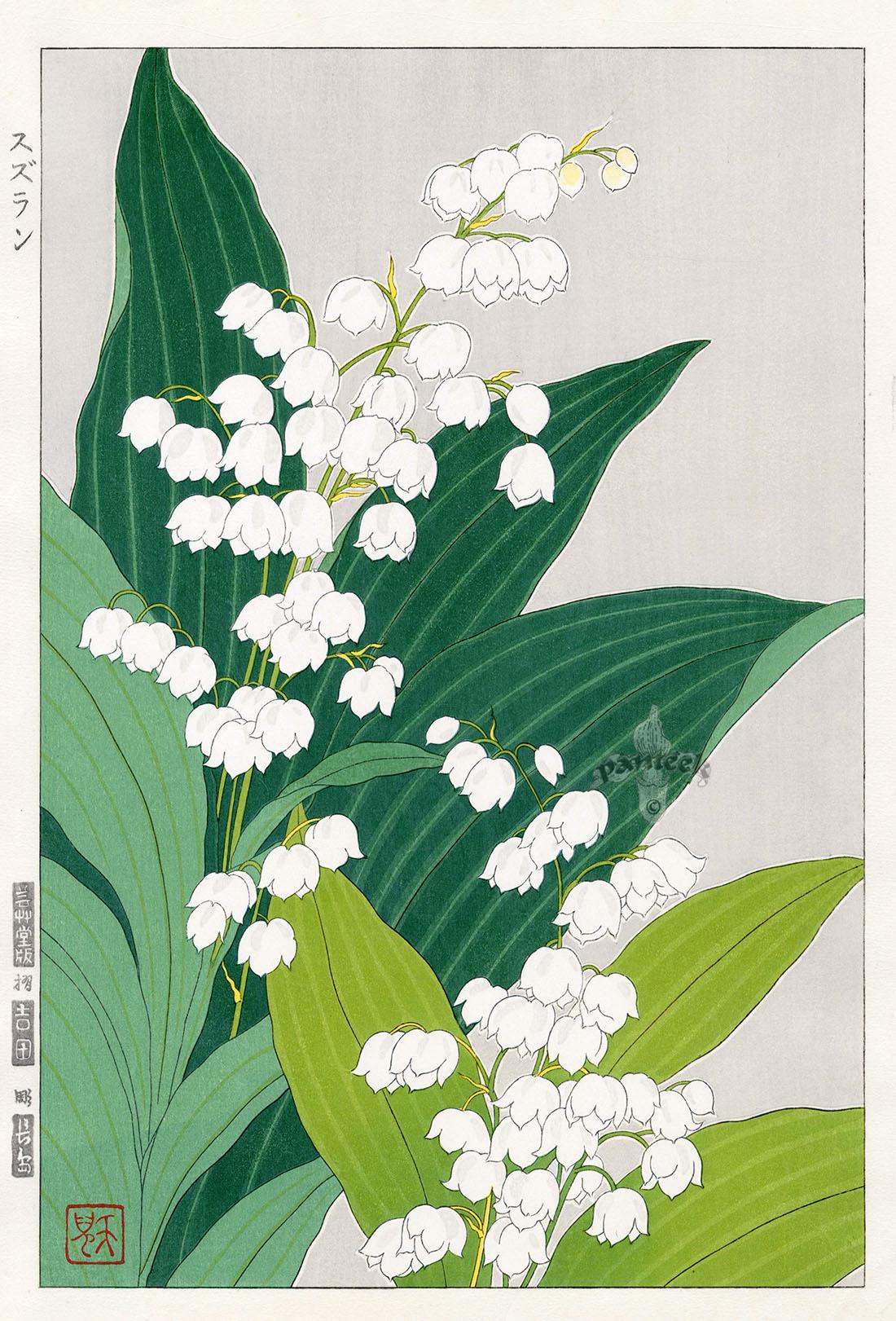Lily of thevalley by teru kuzuhara from shodo kawarazaki spring lily of thevalley by teru kuzuhara from shodo kawarazaki spring flower japanese woodblock prints izmirmasajfo Gallery